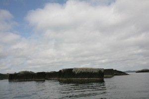 Black Rocks in Bay of Islands