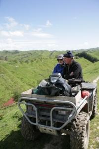 Sheep herding in New Zealand
