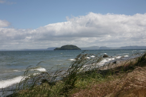 Lake Taupo waves