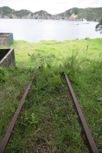 Whangamumu