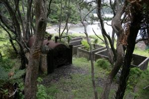 Whangamumu Harbor