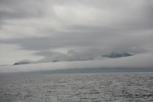 Fog at Cape Brett